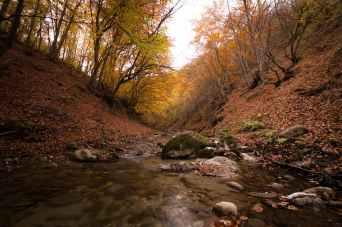 Foto door Anton Atanasov op Pexels.com