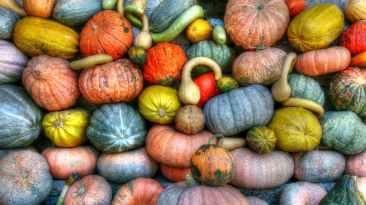 Foto door Flickr op Pexels.com