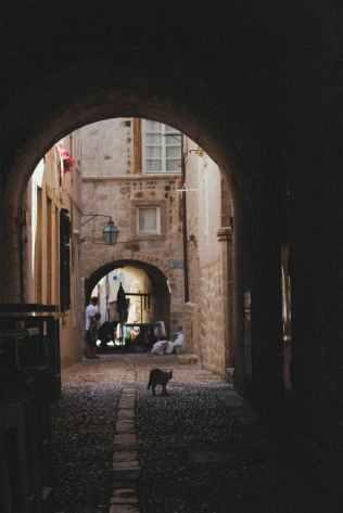Foto door Anfisa Eremina op Pexels.com