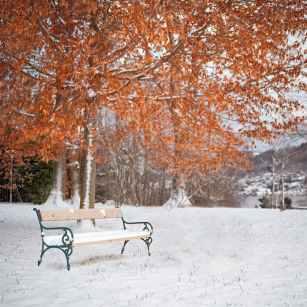Foto door Simon Matzinger op Pexels.com