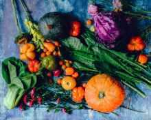 Foto door Ella Olsson op Pexels.com