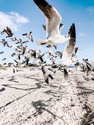 Foto door Julia Kuzenkov op Pexels.com