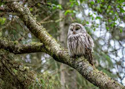 Foto door Erik Karits op Pexels.com